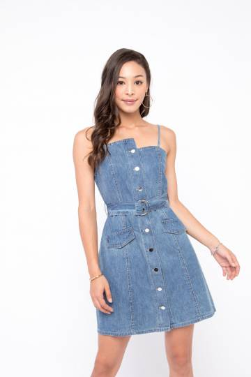 Vander Denim Dress