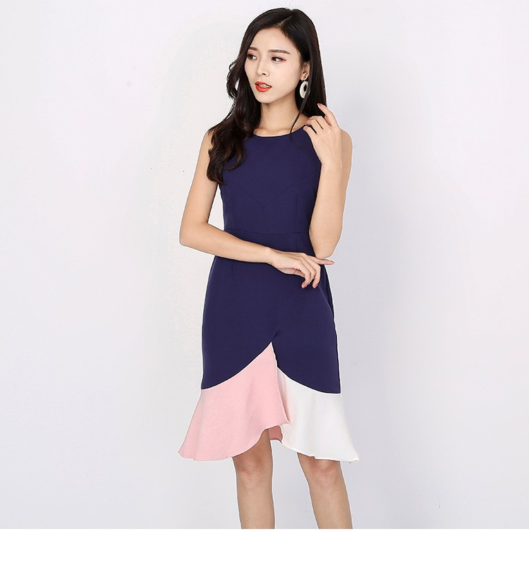 Pelrin Colourblock Dress in Navy