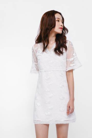 Leferyn Embroidery Overlay Dress