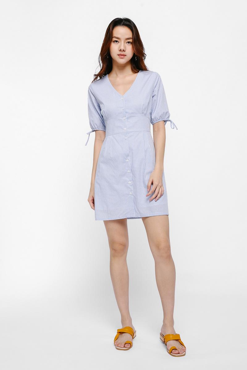 Danae Gingham Puff Sleeve Dress