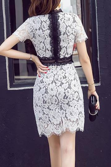 (Pre-Order) Contrast Short Sleeve Lace Dress in White