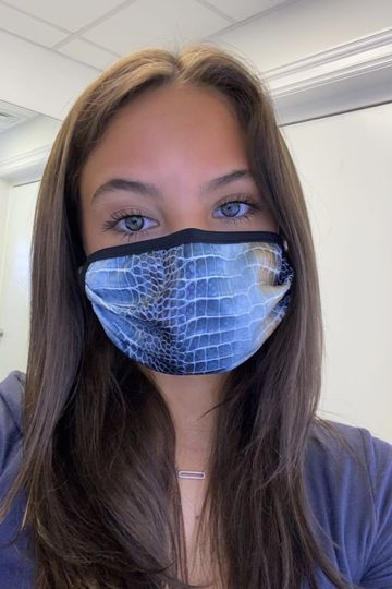 Face Mask - Blue Scale
